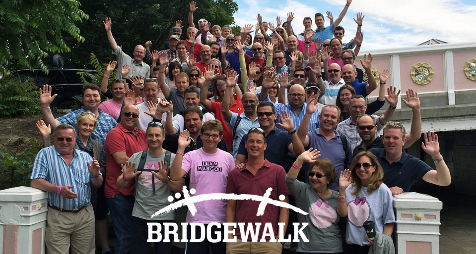 Bridge Walk 2014